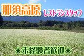 リゾートバイト那須高原★人気高原リゾート!時給1000円で寮費無料ですよ!!写真
